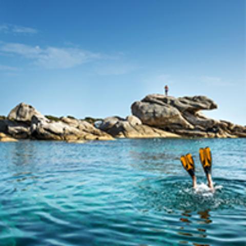 Section Plongée – Découverte des fonds marins