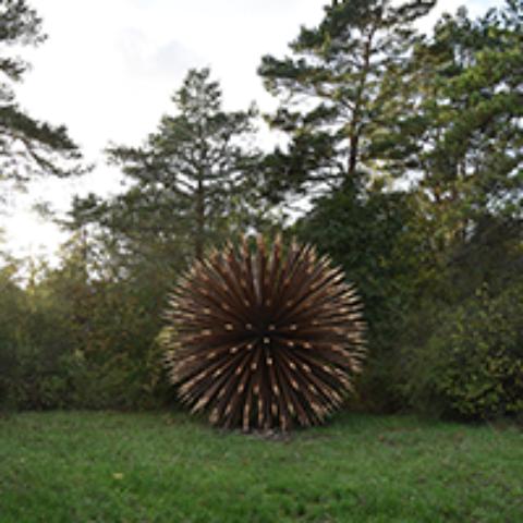 SLVie 14 – Randonnée «L'art qui cache la forêt»