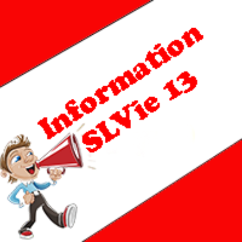 Information SLVie 13
