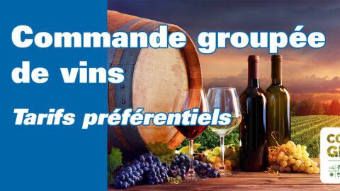 Domaines et Villages : commande de vins groupée
